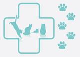 Fototapeta transparent - opieka - Zwierzę domowe