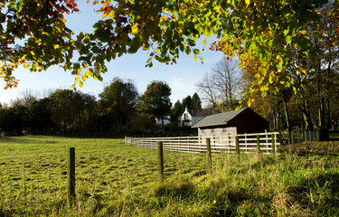 Stables and Field