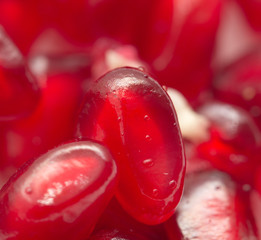 fresh red juicy pomegranate . macro