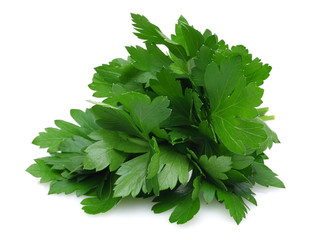 Herb Series Parsley