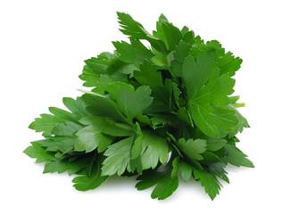 Herb Series Parsley