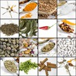 Collage - Spices and herbs on white background