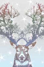 Gefrorener Baum Horn Hirsch