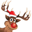Rudolf the reindeer with red nose and hat