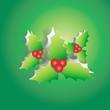 Mistletoe peel off from green paper background