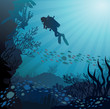 Coral reef with fish and silhouette of diver