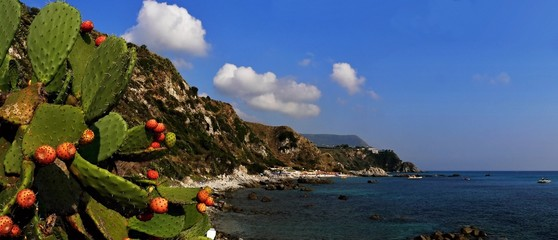 View to beach Salamite