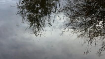 Gotas de lluvia sobre el agua