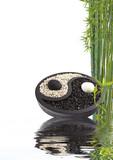 Fototapety yin yang bambou bien-être