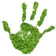 Conceptual human hand print made of fresh green grass