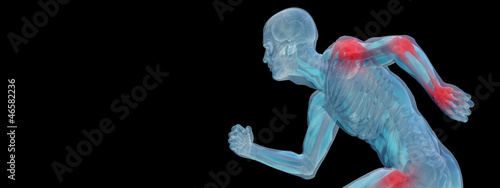 High resolution 3D human for anatomy,medicine and health