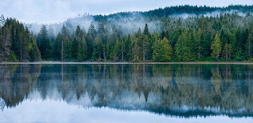 Perfect Reflection of Misty Forest in Lake