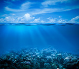 Fototapety Underwater coral reef seabed view with horizon and water surface