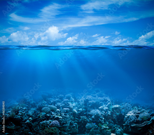Fotobehang Koraalriffen Underwater coral reef seabed view with horizon and water surface