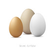 Three Eggs with white background - Frohe Ostern