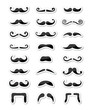 Moustache / mustache icons isolated set as labels