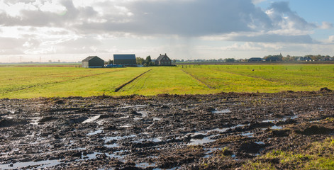 Wet field in the autumn season