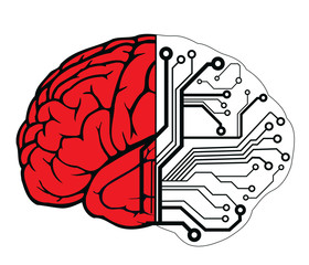an human brain as a central processing unit