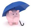 Sparschwein Regenschirm