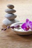 Fototapety pampering orchid