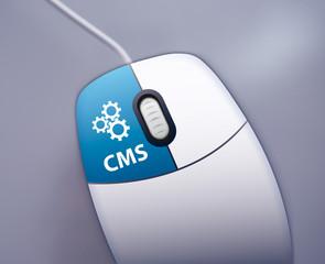 CMS selbst pflegen