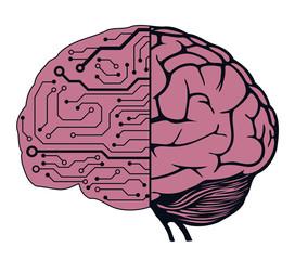 an human brain as a central processing unit