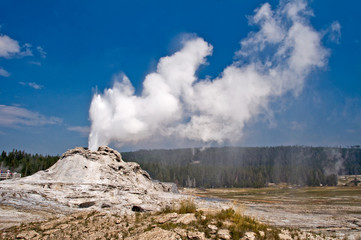 Castle geyser - Parc de Yellowstone, USA