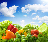 Fototapety Healthy food landscape against sunny blue sky. Mixed vegetables