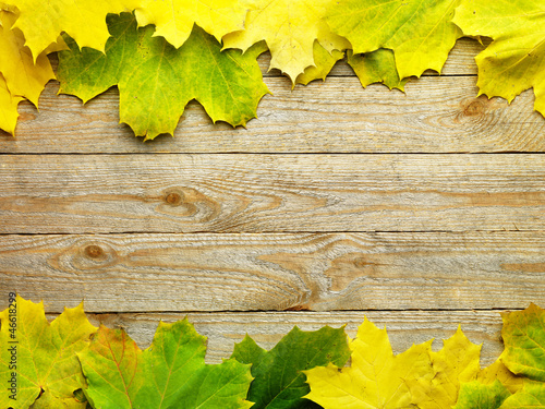 Leinwandbild Motiv Autumn Leaves over wooden background.With copy space