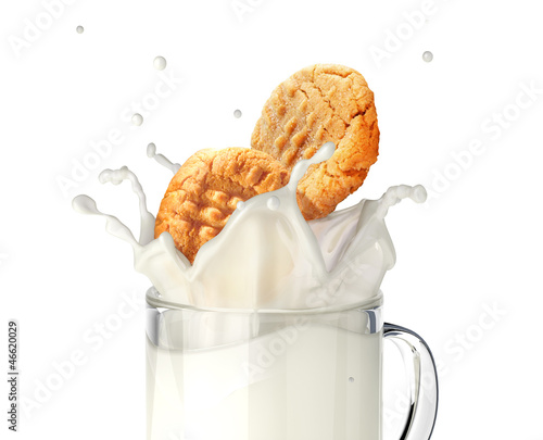 Two cookies biscuits falling into a glass mug full of fresh milk