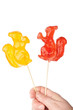 Hand holding two squirrel shape lollipops