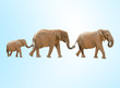 three elephants against a blue background