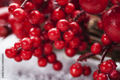 Christmas wreath berries
