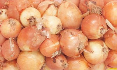 Onions in a fishnet.