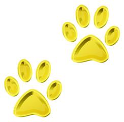 golden cat paws