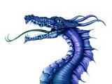 Fototapety Blue Dragon