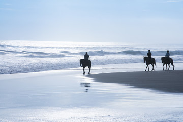 horse riding tour kuta beach bali