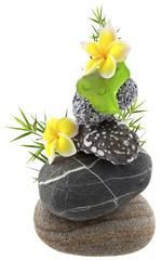 décor galets, bambou et fleurs de frangipanier
