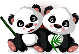 cute cartoon panda's brother