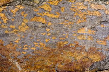Orange Quartzite Rock