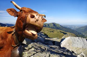 Vache salers, arrière plan montagne