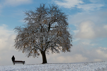 lonely girl sitting under snowy tree