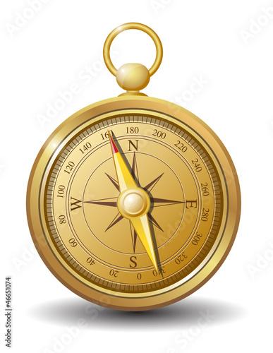 Gold compass vector