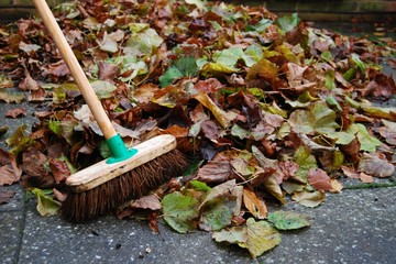 Pile of autumn leaves on backyard patio with sweeping brush