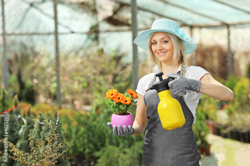 A beautiful female gardener watering a plant