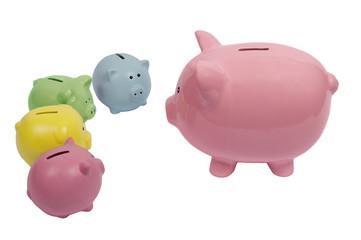 Big Piggy Talking to Little Piggies