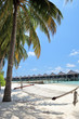 Scene from Maldives island, sandy beach, palm trees and hammock