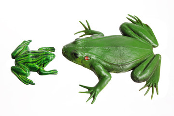 Miniature Toy Frogs