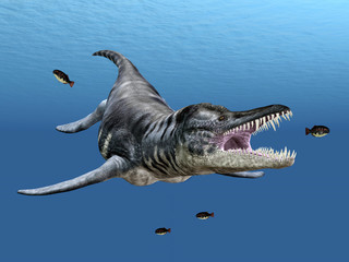Liopleurodon While Hunting