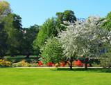 Fototapety Summer park